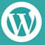 Grave bug per un plugin di WordPress