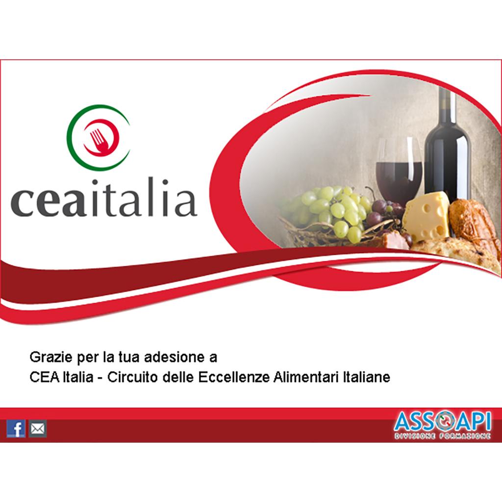 Cea Italia progettazione newsletter
